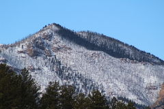 Colorado Burn Scar Mountain Royalty Free Stock Photography