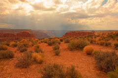 Colorado Canyon Royalty Free Stock Photography