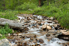 Colorado Cascade Stock Image