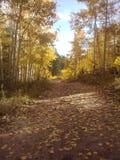 Colorado ein versteckter See Stockbilder