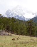 Colorado Stock Image