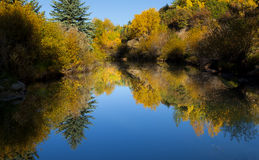 Colorado Fall-12 3968 Stock Images