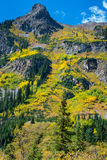 Colorado Fall Foliage Conundrum Hot Springs Trail Stock Images