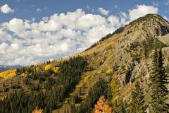 Colorado Fall landscape Royalty Free Stock Photos