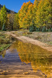 Colorado Fall Landscape Reflection Royalty Free Stock Photos