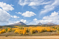 Colorado Fall Mountain Scenic Stock Images