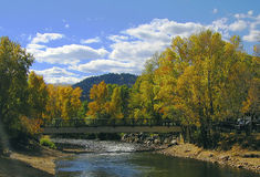 Colorado Fall River Scene royalty free stock photos