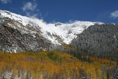 Colorado fall time Royalty Free Stock Image