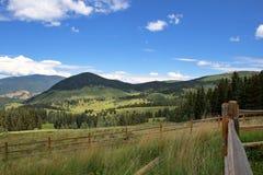 colorado fields горы Стоковые Фото