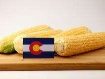 Colorado-Flagge auf einer Holzverkleidung mit dem Mais lokalisiert auf einem weißen Ba stockfotografie