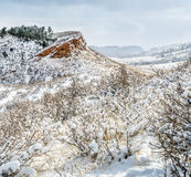 Colorado foothills in fresh snow. Sandstone cliffs and meadows of Lory State Park near Fort Collins royalty free stock images