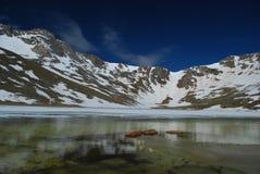 colorado góra Evans fotografia royalty free