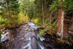 Colorado-Gebirgsfluss lizenzfreies stockfoto