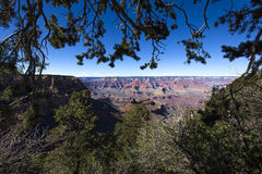 Colorado grand canyon, from south rim, Arizona Stock Photography