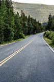 Colorado highway lined with trees. An empty two lane Colorado road / highway in the mountains Stock Photography