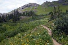 colorado hiking тропка гор утесистая Стоковые Изображения RF