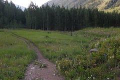 colorado hiking тропка гор утесистая Стоковые Фотографии RF