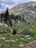 Colorado landscape Royalty Free Stock Image