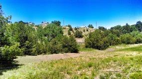 A Colorado Landscape royalty free stock photo