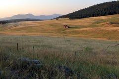 Colorado landskap med den gamla ?vergav tr?hyddan arkivbild