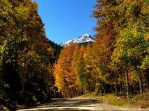 Colorado montering Princeton som inramas i Autumn Colors Royaltyfri Fotografi