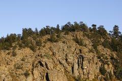 Colorado mountain Royalty Free Stock Image
