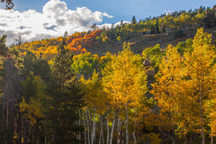 Colorado Mountain Landscape in Autumn Stock Images