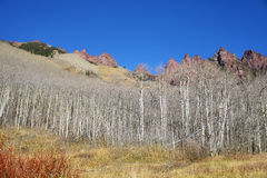 Colorado mountain landscape in Maroon Bells Snowmass Wilderness. Royalty Free Stock Photography
