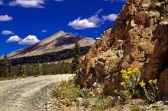 Colorado Mountain Pass Road and Wildflowers stock photo