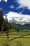 Colorado mountain pasture. A summer mountain pasture in Colorado showing mountains and blue sky Royalty Free Stock Images