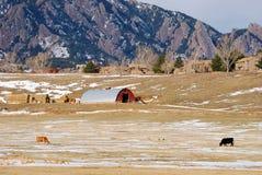 Colorado Mountain Scene. A photograph captured in colorful Colorado Royalty Free Stock Photo