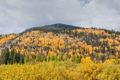 Colorado Mountain Scenic in Fall Royalty Free Stock Photos