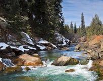 Colorado Mountain Stream. Flowing Mountain Stream in the Rocky Mountains of Colorado Stock Image