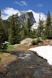 Colorado Mountain Stream. Beautiful Colorado mountain stream fed by melting spring snows Royalty Free Stock Photos