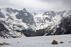 Colorado Mountains. Peek through the snow Stock Images