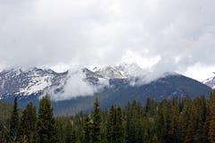 Colorado Mountains. In the morning fog Stock Photos