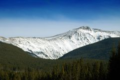 Colorado mountains in winter. Mountains in Colorado with snow in the middle of winter against a blue sky and forest Royalty Free Stock Photo