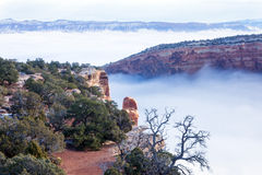 Colorado National Monument. Plateau in the snow, canyon in fog Stock Photos