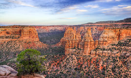 Colorado National Monument Scenic Landscape at Dusk Stock Photo
