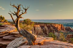 Colorado National Monument at Sunrise Royalty Free Stock Photo
