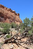 Colorado National Monument Royalty Free Stock Photos