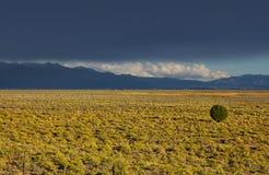 Colorado plains Royalty Free Stock Photo