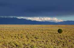 Colorado plains Stock Images