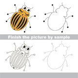 Colorado potato beetle. Drawing worksheet. Royalty Free Stock Images