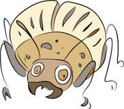 Colorado potato beetle - pest of potato crops Royalty Free Stock Image