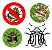 Colorado potato beetle, prohibition sign. vector illustration Stock Photography