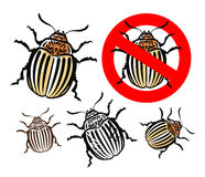 Colorado potato beetle and prohibition sign. vector illustration Royalty Free Stock Photo