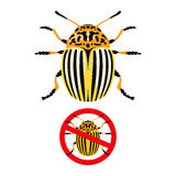 Colorado potato beetle and prohibition sign Royalty Free Stock Photos