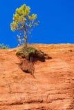 Colorado Provencal, Provence, Frankreich lizenzfreies stockfoto