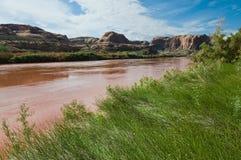 Colorado River. Red rocks along the Colorado River, Moab, Utah Stock Images